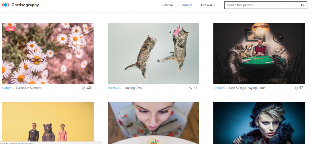 Free stock images - gratisography