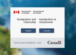 pay for canada visa online