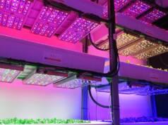 Types of Vertical Farming Lighting system